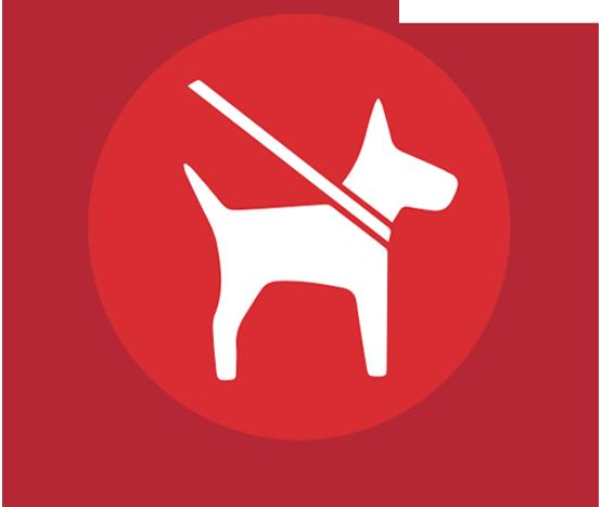 icona-cani-a guinzaglio